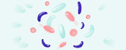 EMMA test (Endometrial Microbioma Metagenonic Analysis) hero-image