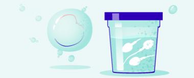In vitro z własnymi jajeczkami hero-image